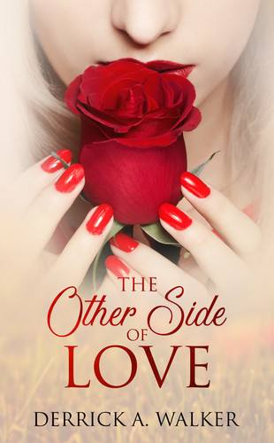 The Other Side of Love.jpg