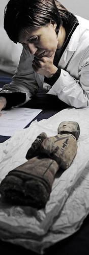 """""""I DUE IMPERI - L'AQUILA E IL DRAGONE"""", Palazzo Reale, Milano, Marzo - Aprile 2010.  per: Mondo Mostre"""