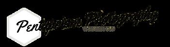 Penta Extended Logo - white background p