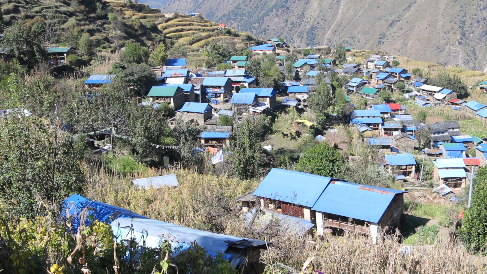 Tipling Village