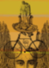 117 Yellow Alice, bike.jpg