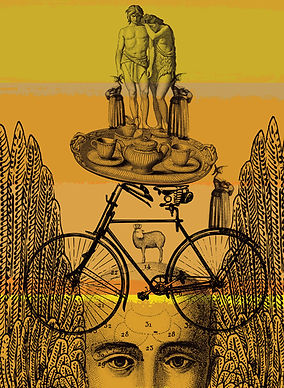 117 Yellow Alice, bike.jpg
