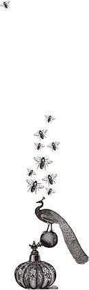 No. 142 | Like Bees To Honey