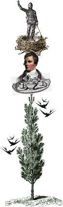No. 93 | Robert Burns Up A Tree