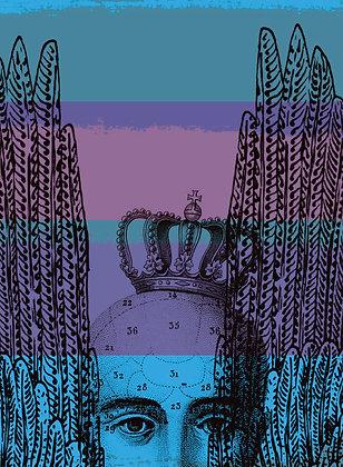 No. 116 | Alice In Hiding