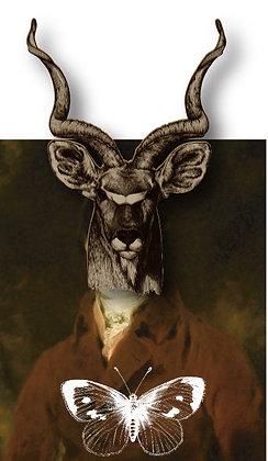 188 | The Elk King