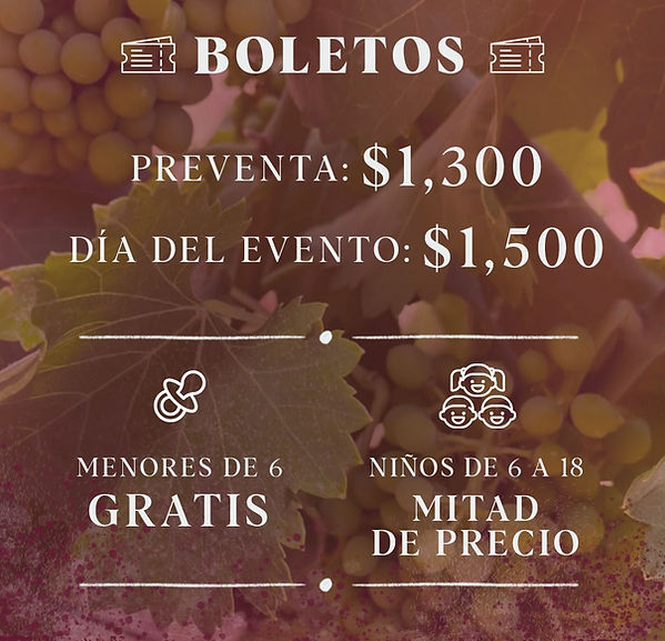 PRECIO-BOLETOS_edited.jpg