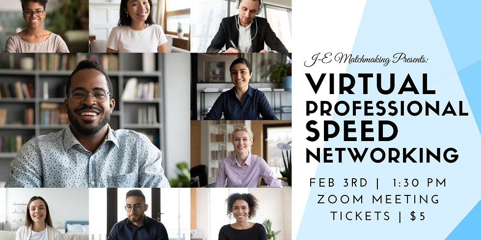 Virtual PROFESSIONAL Speed Networking