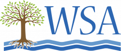 WSA Generic Logo-250x107.png