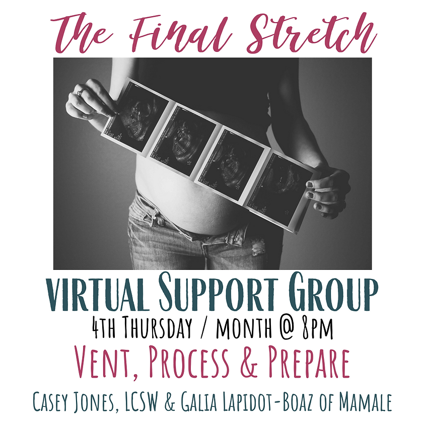 Virtual Prenatal Support Group