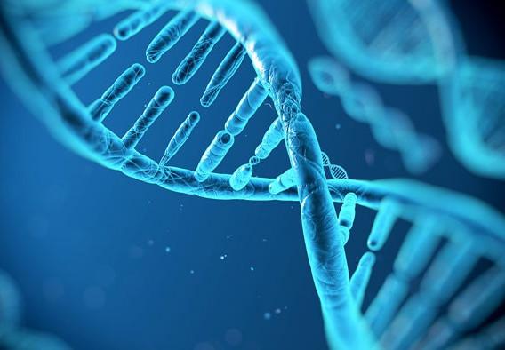 genetica_020418.jpg
