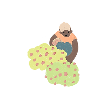 WWOOF-Icon_0005_Layer-2.png