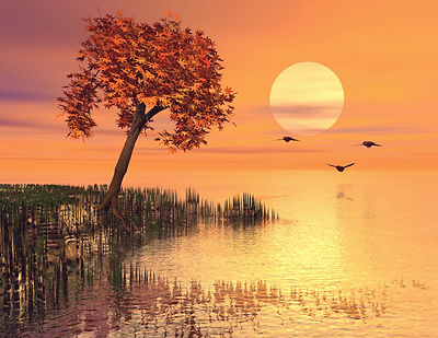 Copy of sunrise at the lake_edited.jpg