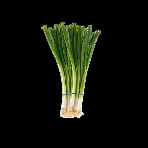 Green Onions Leaves-Per Bundle