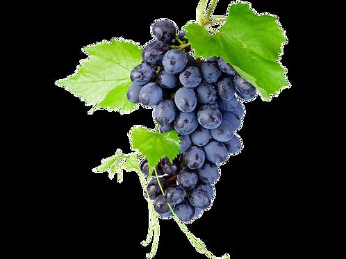 Black Grapes/ கருப்பு திராட்சை