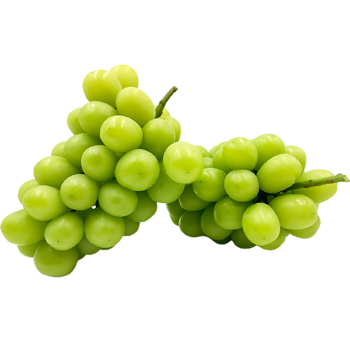 Muscat Grapes/மஸ்கட் திராட்சை