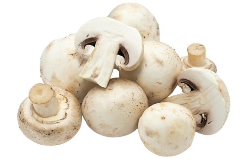 Button Mushroom Packed
