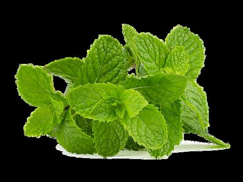 Pepper mint Leaves/புதினா