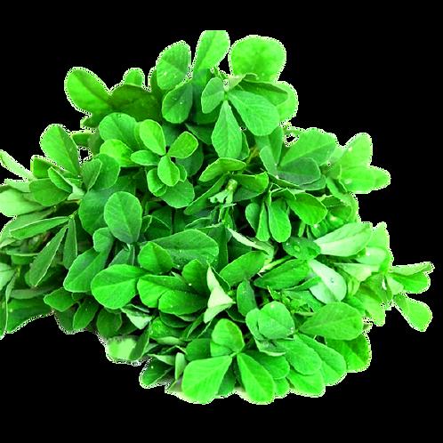 வெந்தயக் கீரை/Fenugreek leaves.