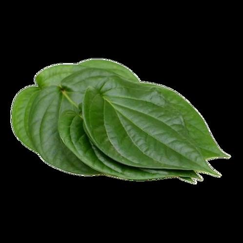 வெற்றிலை/Betel leaves