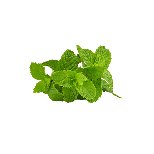 Fresh mint/ புதினா