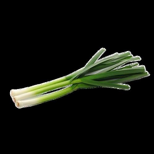 Fresh Onion Leaves