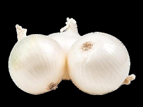 White onion/வெள்ளை வெங்காயம்