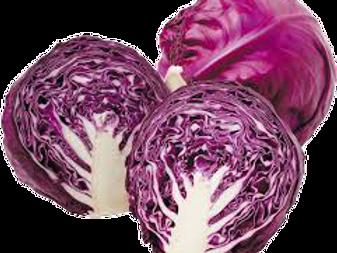 Purple Cabbage/ஊதா முட்டைக்கோஸ்