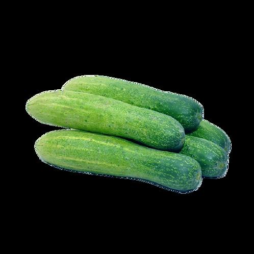 Cucumber/ வெள்ளரிக்காய்