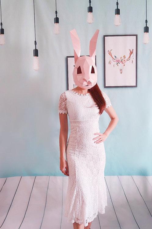 浪漫白色蕾丝长裙 Romance Lace White Dress