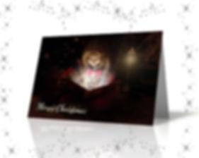 xmas-cardsbook.jpg