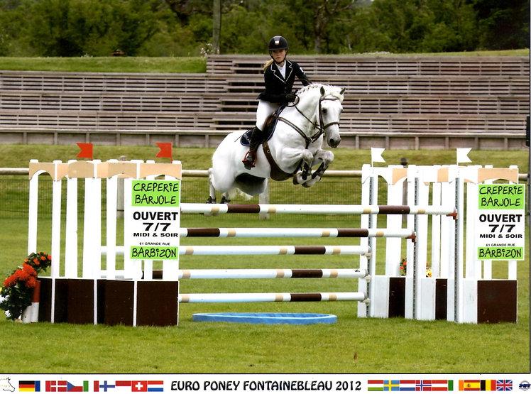 stallion4.jpg