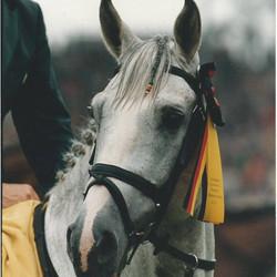 Cruising Aachen 1999