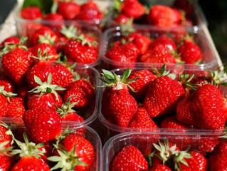 Conserver et traiter les fraises des Vergers Micolombe: le mode d'emploi