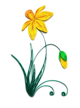 Daffodil -  flower series 2016