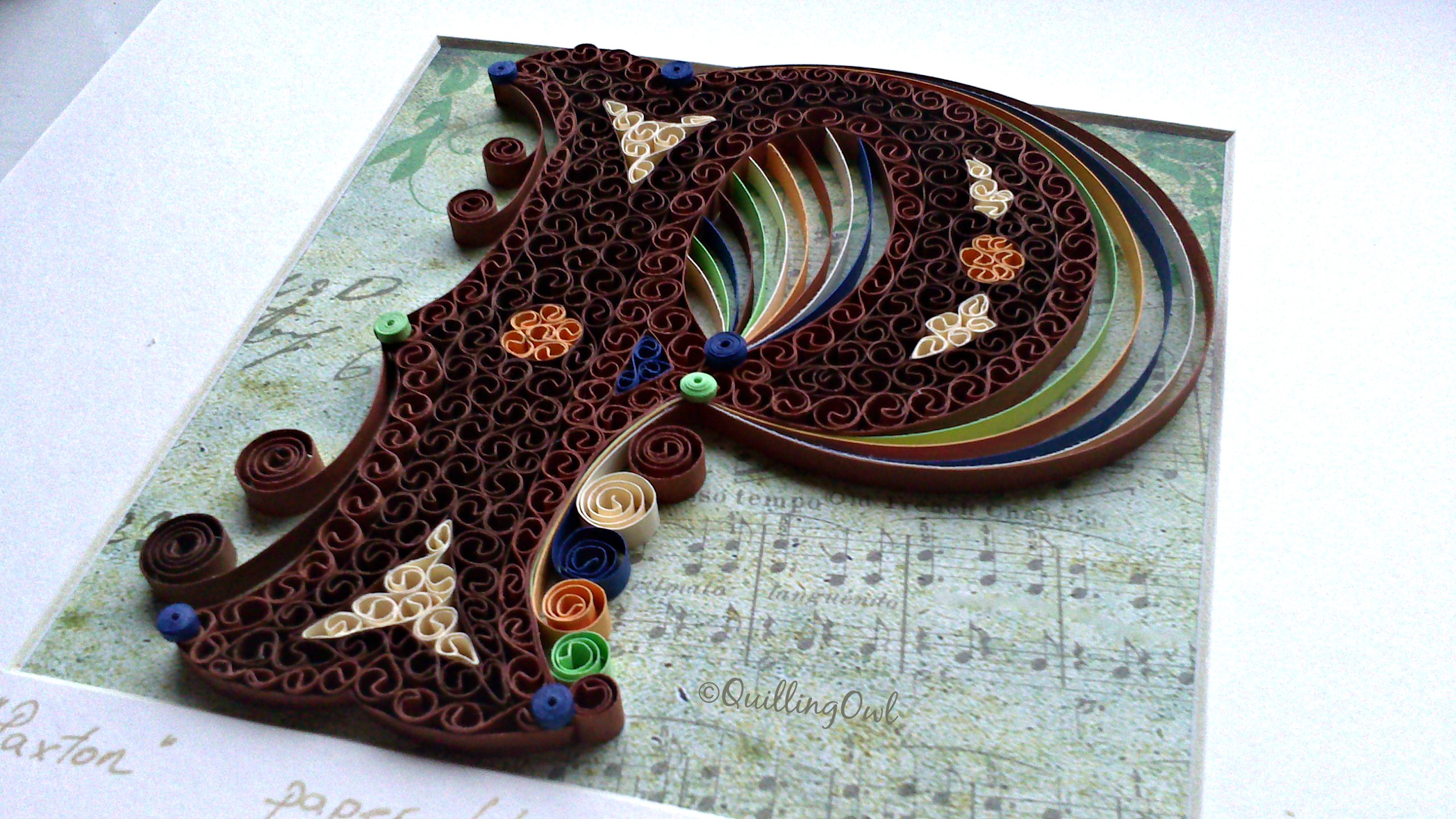 Paxton, paper quilling