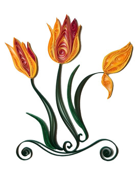 Tulip -  flower series 2016