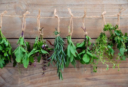 Harvest your Herbs