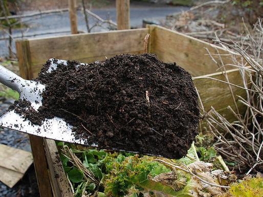 Compost: Put Yard Waste to Work