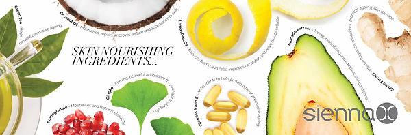 Sienna X image ingredients.jpg