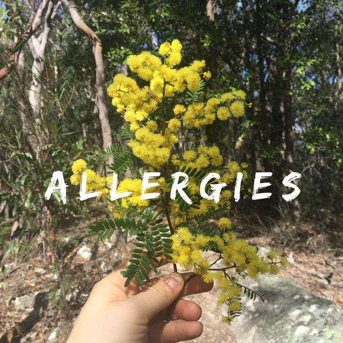 Treating Allergies with Chinese Medicine