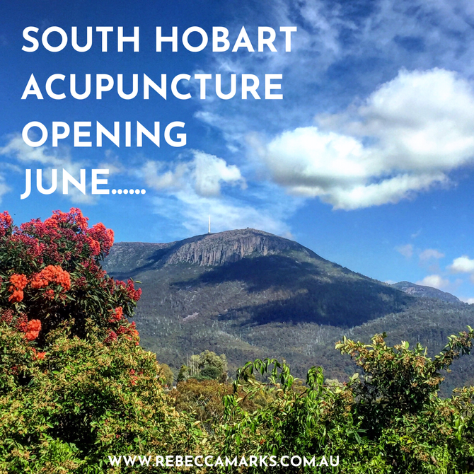 Welcome to South Hobart Acupuncture!