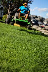 condo grass cutting