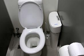 sanitary bin.jpeg