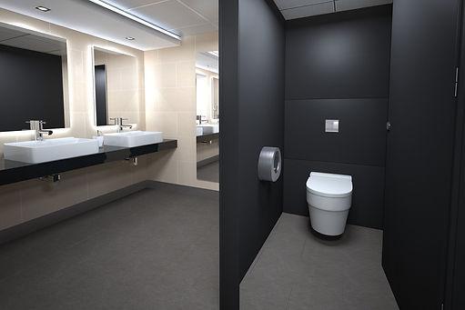 office toilet 2.jpeg