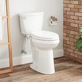 toilet 2.jpeg