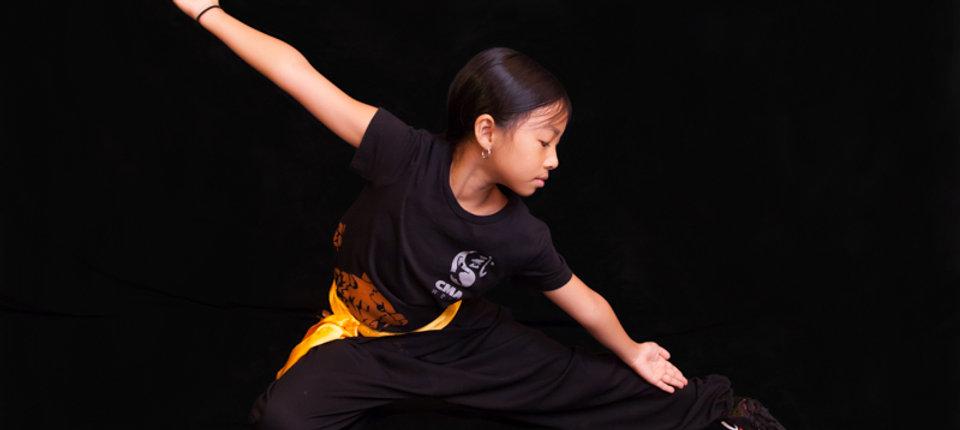 Martial Arts Wushu.jpg
