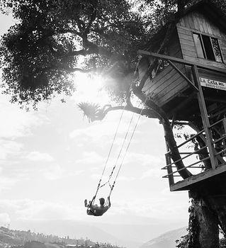 La_casa_del_árbol_y_su_maravillosa_vista