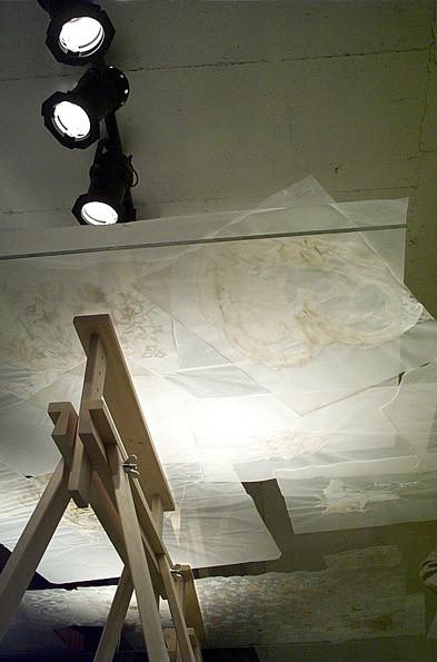 White Zen, installation view