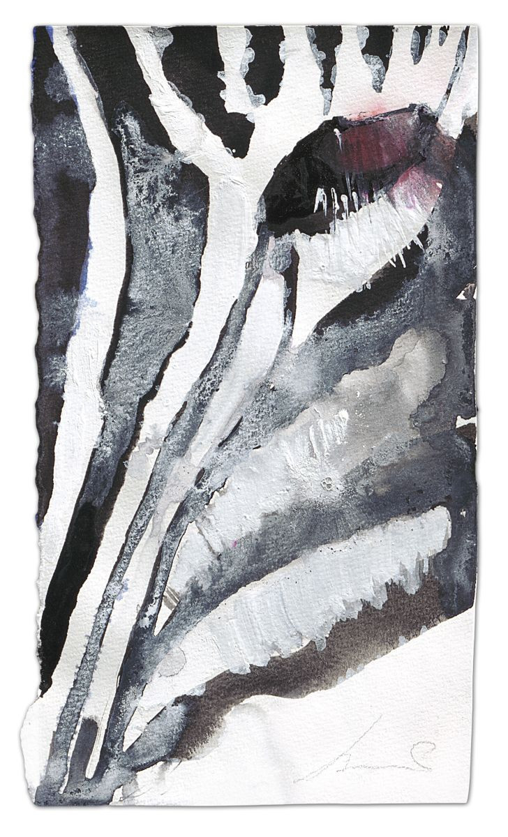 Zebra-Yes, ink and watercolour on paper, 2014